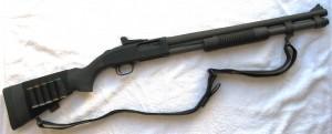 Which Shotgun to buy