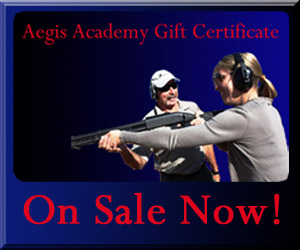 Aegis Academy Gift Certificate for Valentines Day
